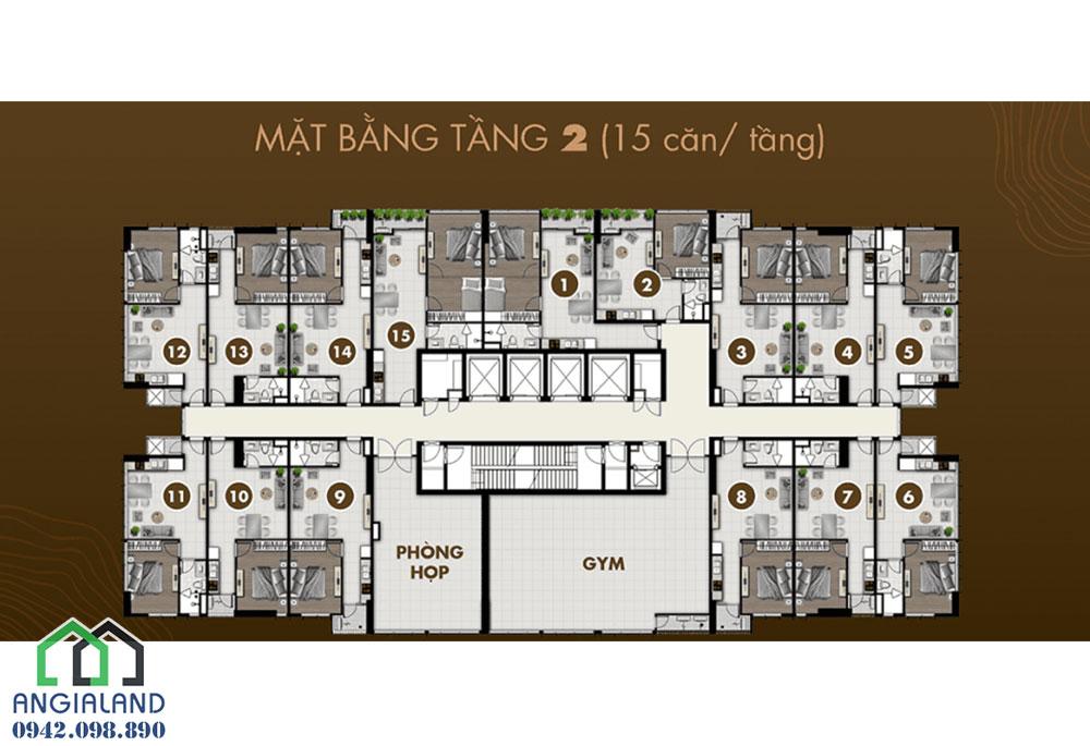 Mặt bằng thiết kế tầng 2 dự án căn hộ Ascent Plaza Quận Bình Thạnh