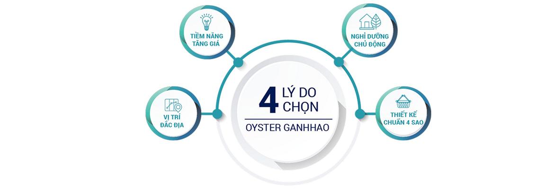 Mua bán cho thuê dự án căn hộ Condotel Oyster Gành Hào Đường 82 Trần Phú chủ đầu tư Vietpearl Group