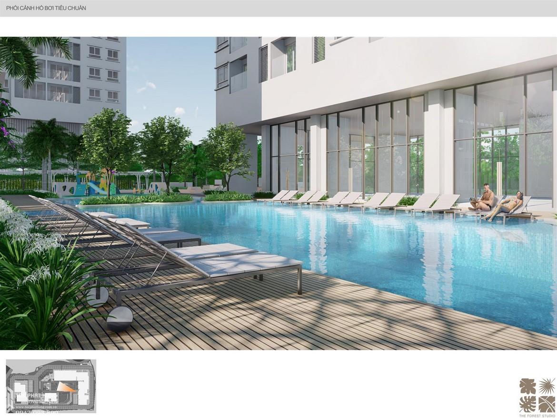 Tiện ích hồ bơi nội khu dự án căn hộ chung cư C Sky View Bình Dương