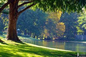 Màu xanh thiên nhiên, sông nước – sự ấm áp và hạnh phúc chỉ ở Palm Springs