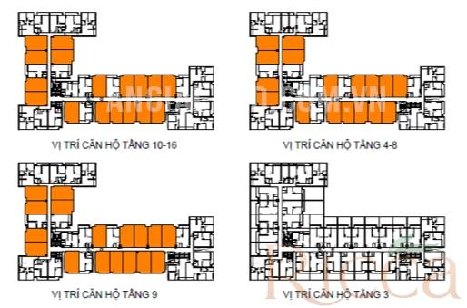 Dự án ricca thiết kế căn hộ điển hình