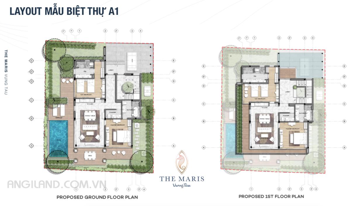 Thiết kế Layout mẫu biệt thự A1 dự án The Maris Vũng tàu