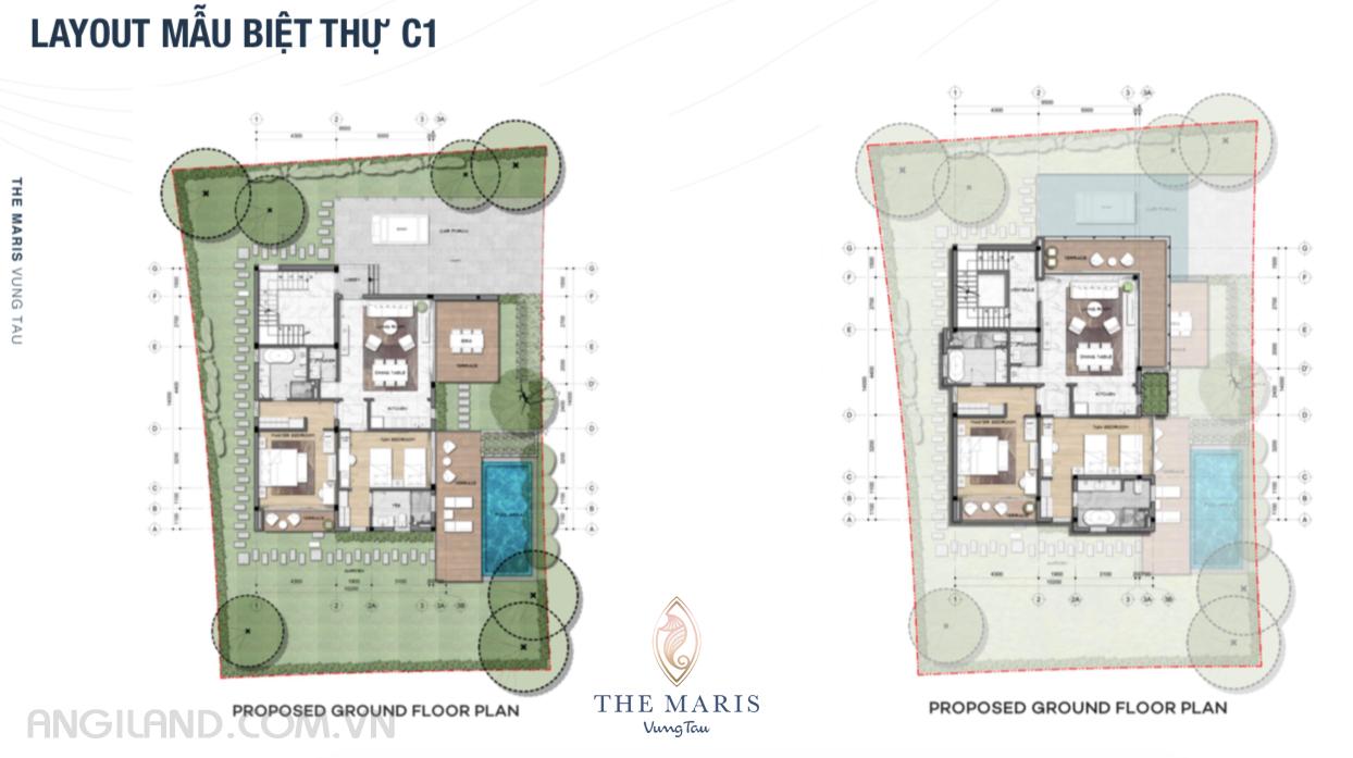 Thiết kế Layout mẫu biệt thự C1 dự án The Maris Vũng tàu
