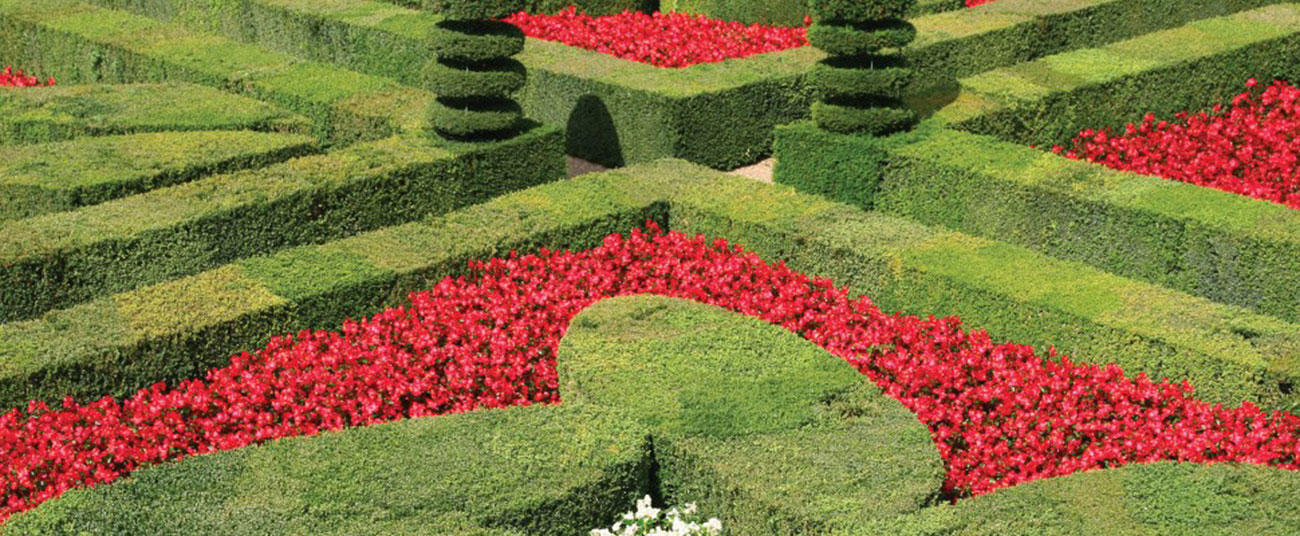Khu vườn mang phong cách quý tộc kiểu Pháp