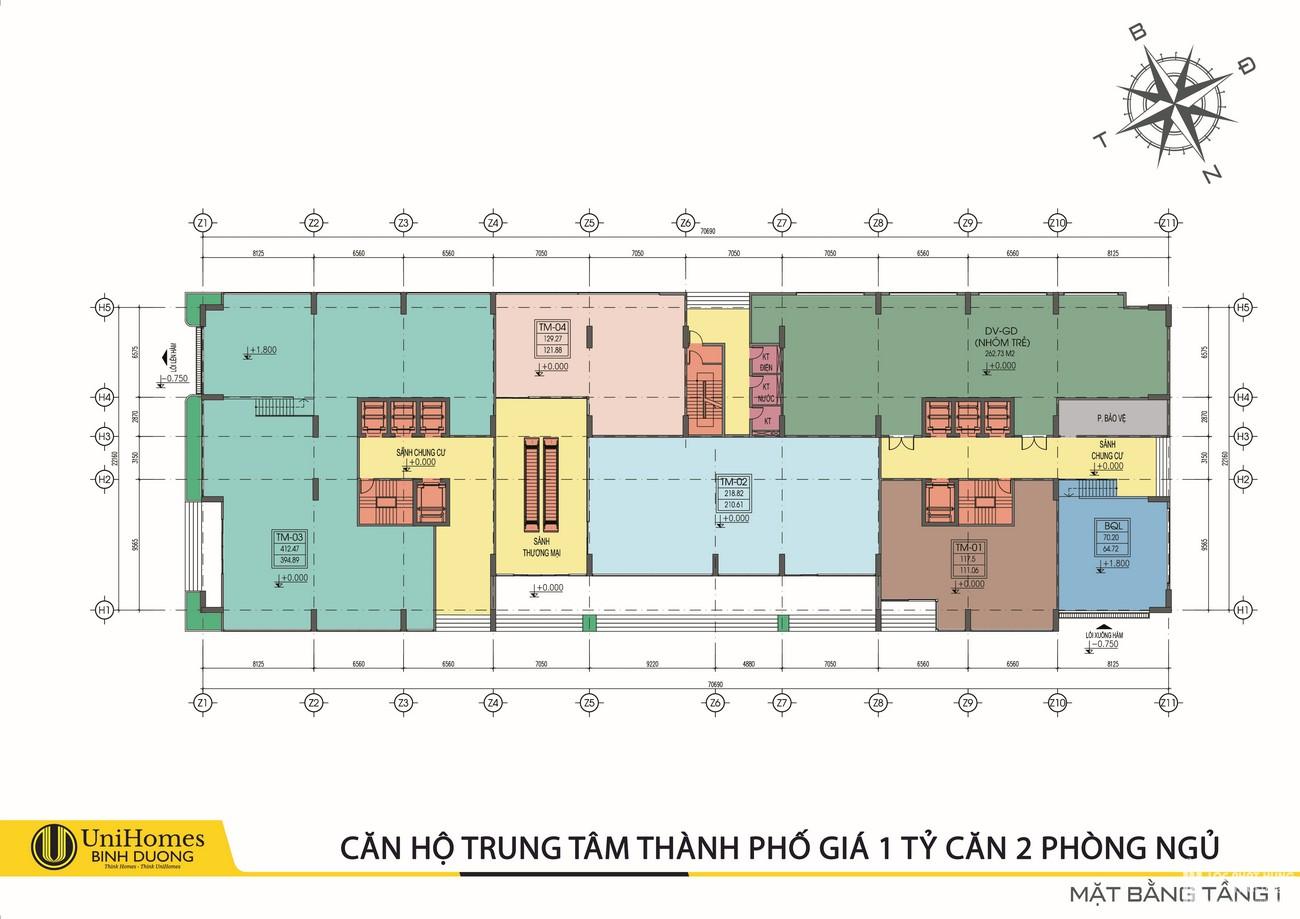 Mặt bằng dự án căn hộ Tecco Home Bình Dương