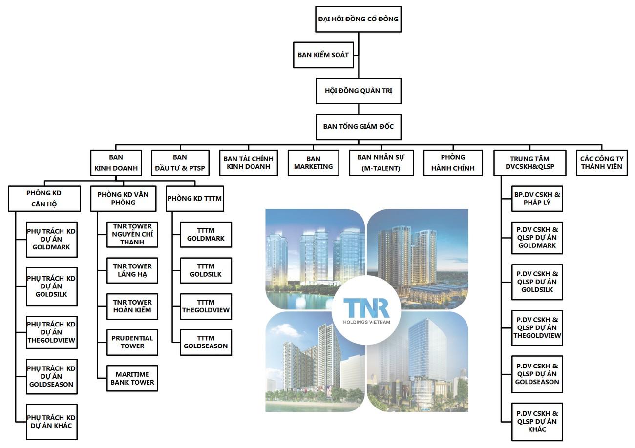 Cơ cấu tổ chức Công ty TNR Holdings